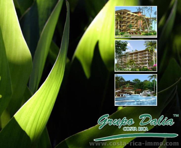 For sale Eco Resort Projet at a prime location at Playa Organo