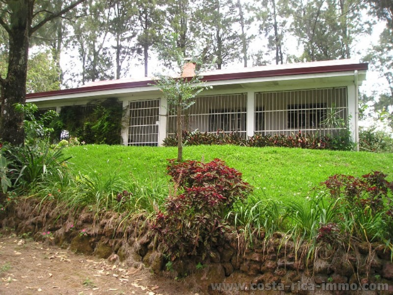 coffee plantation of 3 2 ha with the poas volcano house central valley costa rica. Black Bedroom Furniture Sets. Home Design Ideas