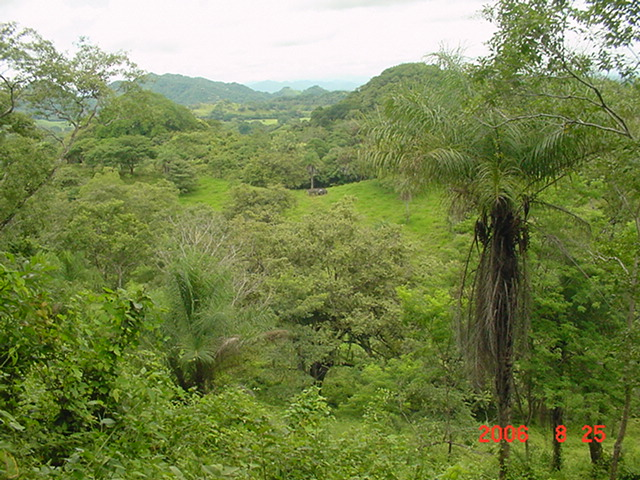 Las Juntas; new dream house surrounded of 5.9 ha, pastures, woods and creek