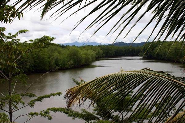 Península de Osa, Investors And End USERSMANY Attractive Options