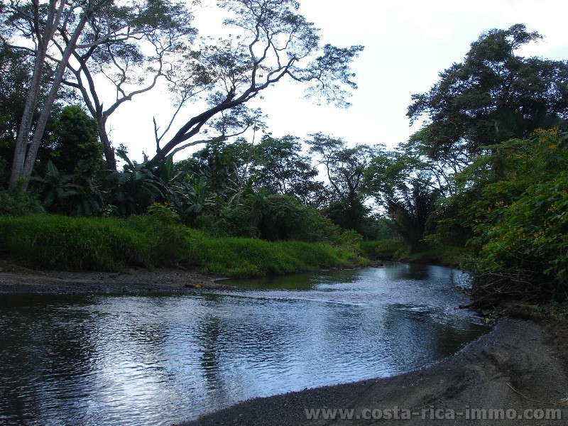 Dream Plots, just Land, Trees Water and Peace at Bagaces - Guanacaste