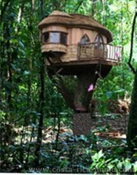 Selva Arenal Lote con 5,000 m2