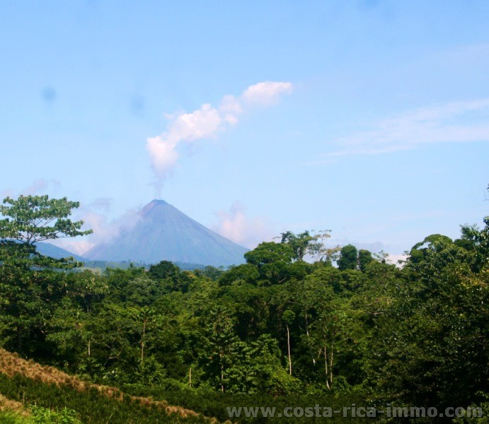 Arenal Forest Lot 5,000 m2