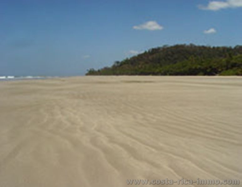 Beach hotel is just 50 meters from the sea, for sale at beach in Mal Pais
