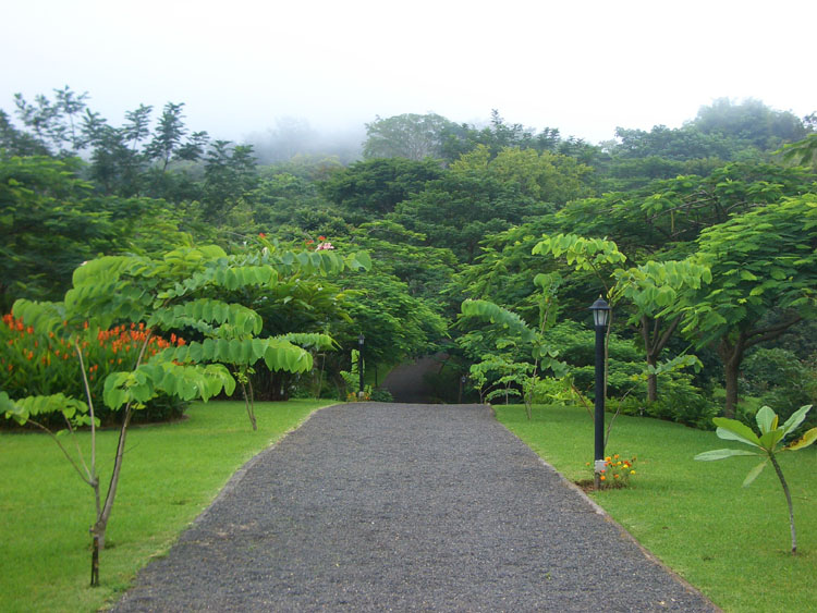 Resort all in botanical gardens for sale in Jaco