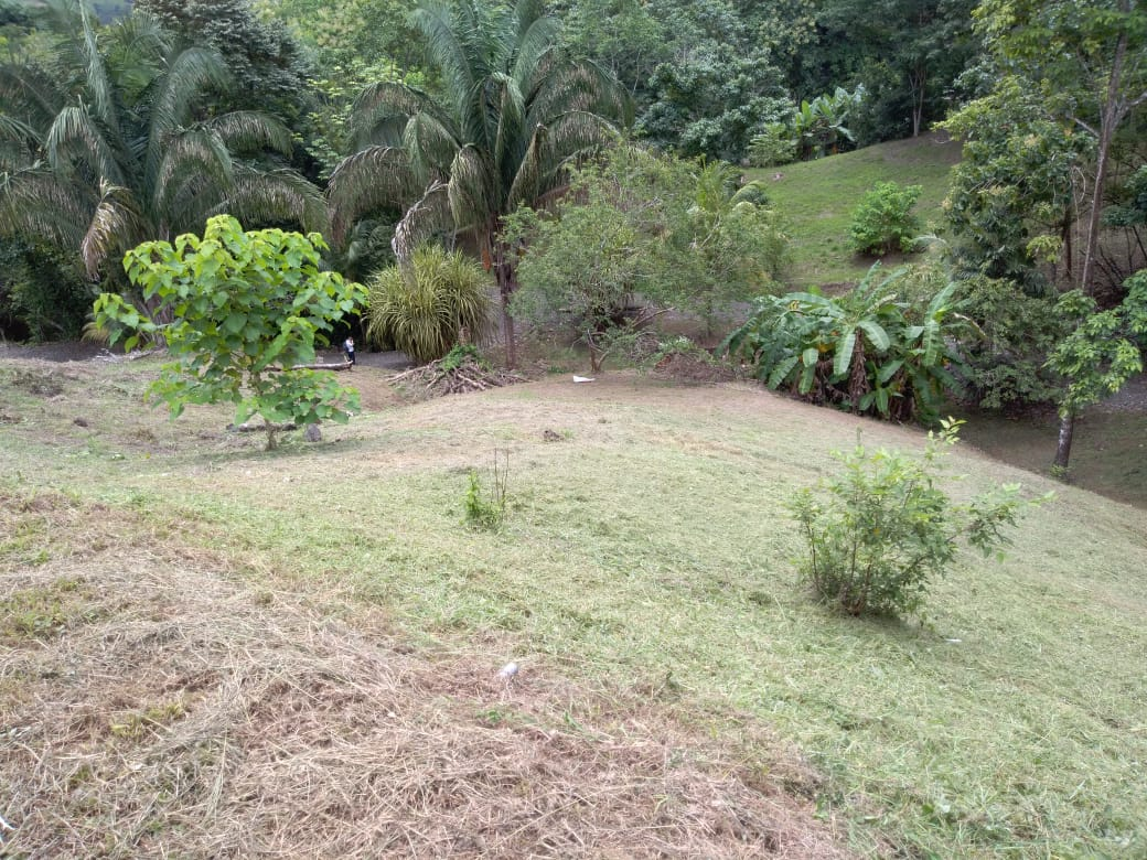 Opportunity to sell house with apartment, worth over $ 200,000.- for only $ 100,000.-, at Parrita.