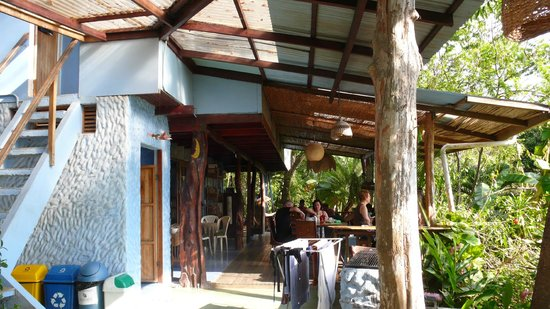 For sale, well established hostel B & B in Montezuma