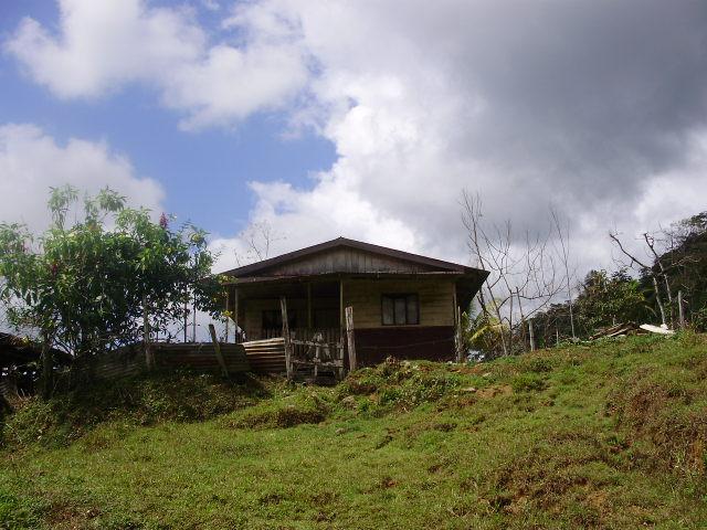 zu verkaufen 49 5 ha farm mit wasserf llen urwald weiden und rustikalem holzhaus bei guaycara. Black Bedroom Furniture Sets. Home Design Ideas