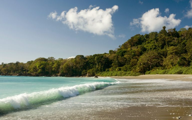 Beach property for sale, your private garden of Eden, a dream opportunity in the Osa Peninsula