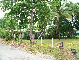 Parrita 514 m2, 2 km from the sea, fully developed plot