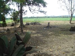 Parrita - 711 m2 plot, just 700 meters from the sea