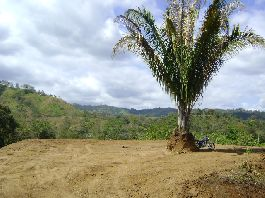 For sale 3 plots with beautiful views at Las Pilas de Parrita