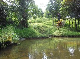 For sale, ecological paradise landscape in Guapiles, Price on request