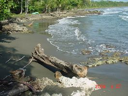 Building Plot for Sale in Cahuita