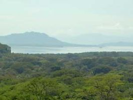 Copal 30,250 m2 of land with the best bridge La Amistad in Guanacaste