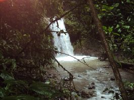 Nature lovers 100 ha farm with large house, 50 ha of forest, 20 haWeiden / fallow land, 24 hectares of teak, waterfalls, streams, springs and much mor