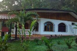 Fire sale, Puerto Jimenez dream home with guest house, pool, surrounded by tropical jungle, at Dos Brazos