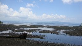 Beach land of 13.648 m2 in Puerto Jimenez - Golfo Dulce