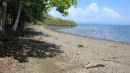 Beach plot with sea front, with 8.763 m2 in Puerto Jimenez - Golfo Dulce