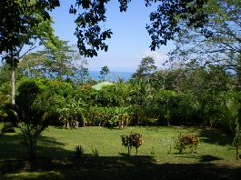 Plot 5,000 m2 near the famous surfing beach Pavones to sell