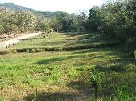 Samara - Top 12 plots, fully developed only 4 km from the sea