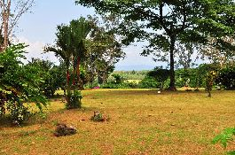 Wonderful farm with beautiful views of the sea, surrounded by natural beauty on the Osa Peninsula