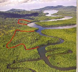 Osa Peninsula,100 Acres, 31 Titled Lots, 10 Mins to Pacific for sale