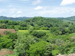 Top building lot, 6.959 m2, fully serviced building lot, surrounded by pure nature