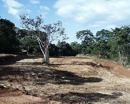 Building Plots in Playa Conchal