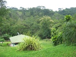 Carmona; opportunity! 50 ha farm with two good houses, two rivers, 10 ponds and some teak
