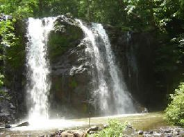 BARGAIN - Farm with 102ha (250 acres) farm with lots of nature, waterfalls and swimming holes on the Nicoya Peninsula