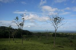 For sale 16 ha farm in Arenal-Tenorio