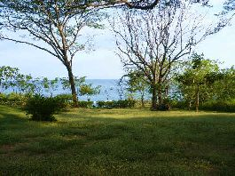 For sale Beach front Property at Montezuma