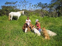 For Sale, beautiful 70,000 m2 Horse Farm close to the Beach in Mal Pais