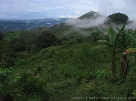 For sale, 2.5 ha farm, divided into 6 building plots in the mountains near San Martin