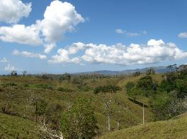 Cattle farm with 283 ha for up to 300 animals at La Gloria de Parrita