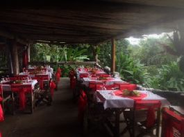 To rent, ecological sanctuary with Restaurant, Laguna and Camping South Pacific