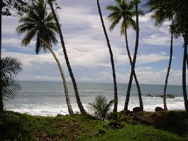 For sale 12 ha farm on the sea with permits for a private marina near Dominical