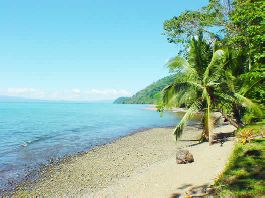 Jungle Lodge with 258 m beach impetus for sale in Golfo Dulce