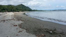 Beach front land for hotel, resort, residential or private, Playa Tortuga