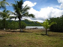 For sale, farm with 26 has, 20 ha private land and 6 ha concessionary land, Golfo Dulce