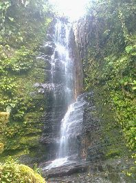 Farm with 309 hectares of pure virgin forest, waterfalls, springs and streams at Lajas de Perez Zeledon for sale