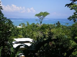 Plot with 3,684 m2 near the famous surfing beach Pavones for sale