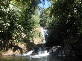 Bargain, beautiful natural farm of 62 ha, with many waterfalls, green areas, buildings and jungle, at Golfito
