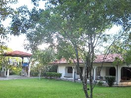 For sale, nice house with separate apartment and a large Rancho in Atenas