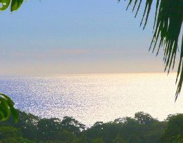 For Sale, 1,5 ha close to Playa Ostional & Surfer Beach Playa Guiones