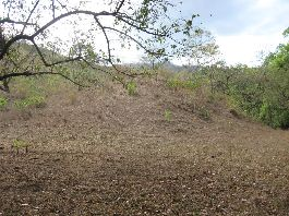 BARGAIN farm Finca for sale 31.5ha on the Nicoya Peninsula is ideal for afforestation