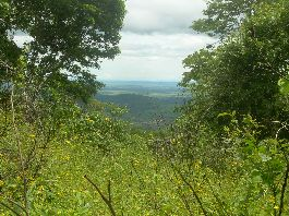 Costa Rica Nature Dream - 82 ha + 50 ha finca near the La Amistad Bridge on the Nicoya Peninsula
