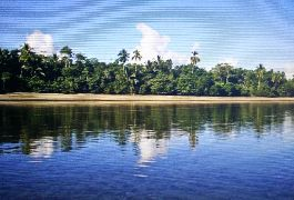 For sale, 22.5 ha large natural paradise on the Osa Peninsula for sale