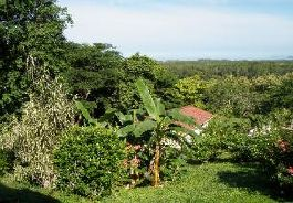For sale, small house close to the sea with a large terrace and tropical garden